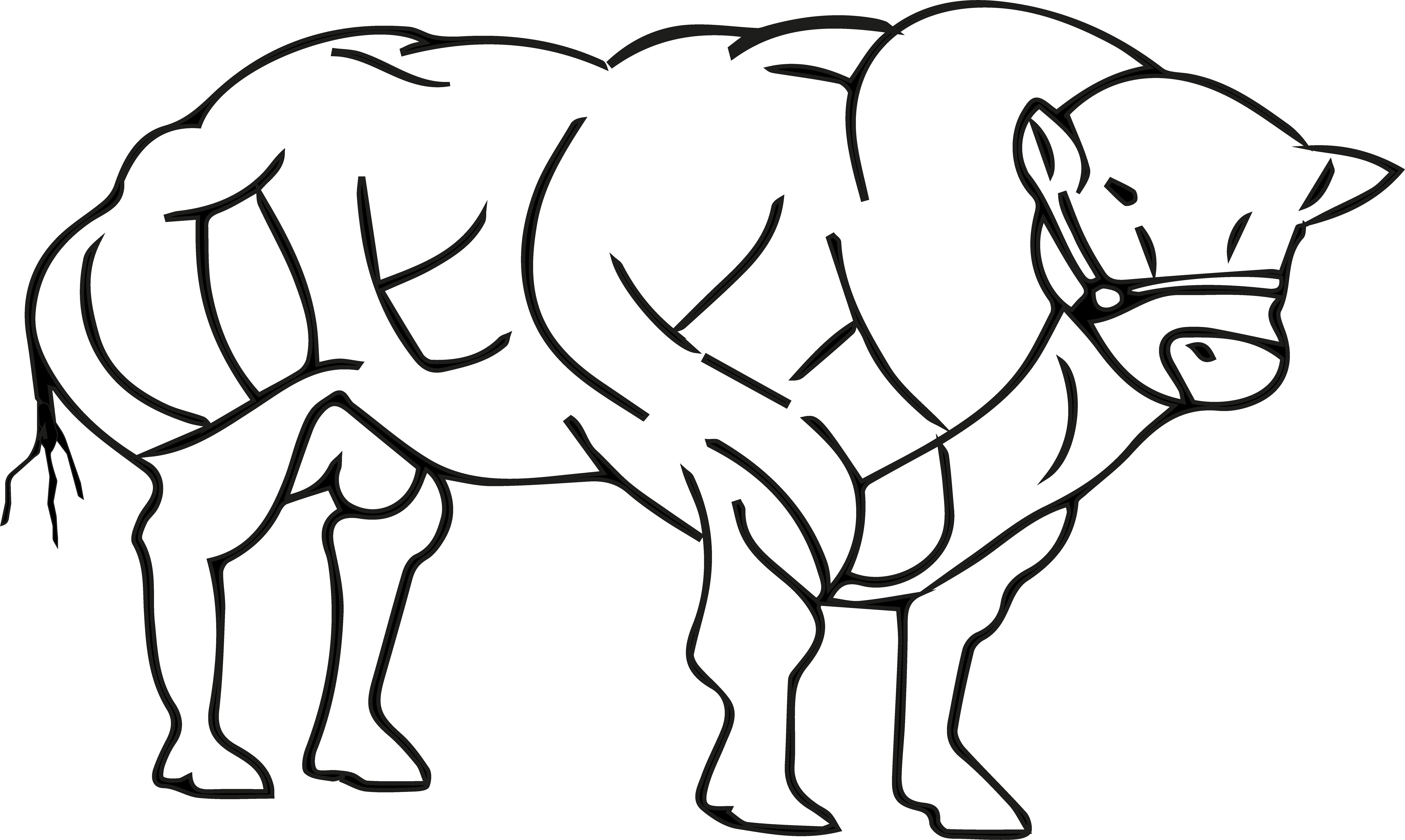 Vleesveehouderij Spronk